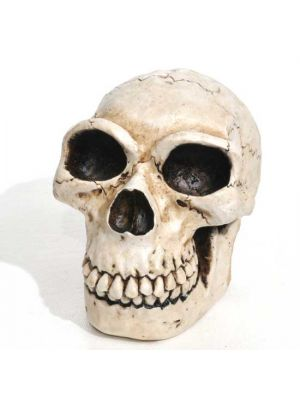 Old Mans Skull Resin Incense Burner 3