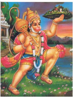 Flying Hanuman  11.25