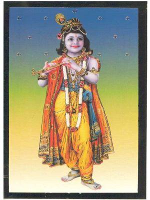 Bal Krishna  7