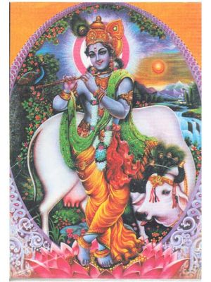 Krishna with Cow  Post Card 5.75